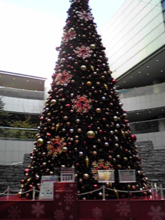 オペラシティのクリスマスツリー
