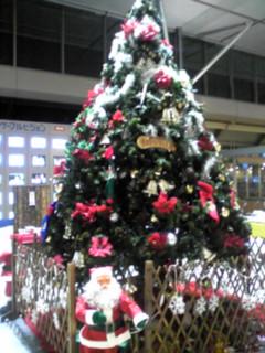 2010年クリスマスツリー特集(4)