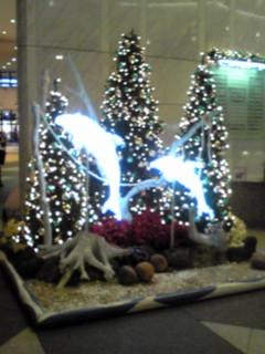 2010年クリスマスツリー特集(6)