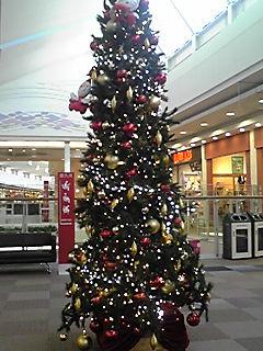 2010年クリスマスツリー特集(8)